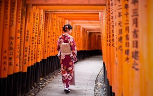 Kyoto and Nara Day Tour from Osaka/Kyoto